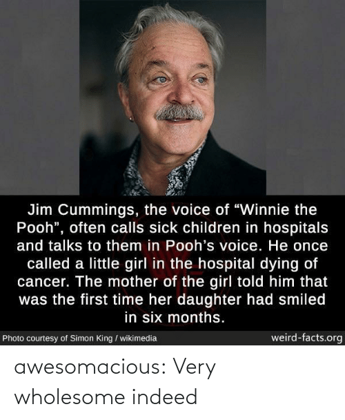 "Told Him: Jim Cummings, the voice of ""Winnie the  Pooh"", often calls sick children in hospitals  and talks to them in Pooh's voice. He once  called a little girl in the hospital dying of  cancer. The mother of the girl told him that  was the first time her daughter had smiled  in six months.  weird-facts.org  Photo courtesy of Simon King / wikimedia awesomacious:  Very wholesome indeed"