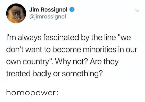 "Minorities: Jim Rossignol  @jimrossignol  I'm always fascinated by the line ""we  don't want to become minorities in our  own country"". Why not? Are they  treated badly or something? homopower:"