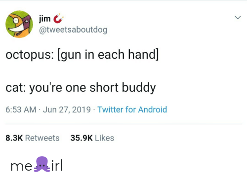 Octopus: jim  @tweetsaboutdog  octopus: [gun in each hand]  cat: you're one short buddy  6:53 AM Jun 27, 2019 Twitter for Android  35.9K Likes  8.3K Retweets me🐙irl
