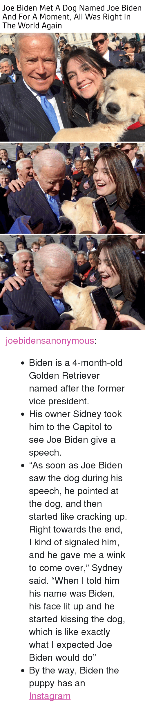 """Cracking Up: Joe Biden Met A Dog Named Joe Biden  And For A Moment, All Was Right In  The World Again <p><a href=""""https://joebidensanonymous.tumblr.com/post/159546520759/biden-is-a-4-month-old-golden-retriever-named"""" class=""""tumblr_blog"""">joebidensanonymous</a>:</p>  <blockquote><ul><li>Biden is a 4-month-old Golden Retriever named after the former vice president.</li><li>His owner Sidney took him to the Capitol to see Joe Biden give a speech.</li><li>""""As soon as Joe Biden saw the dog during his speech, he pointed at the dog, and then started like cracking up. Right towards the end, I kind of signaled him, and he gave me a wink to come over,"""" Sydney said. """"When I told him his name was Biden, his face lit up and he started kissing the dog, which is like exactly what I expected Joe Biden would do""""</li><li>By the way, Biden the puppy has an <a href=""""https://www.instagram.com/p/BQ5qnB5AmrW/?taken-by=bidenthegolden"""">Instagram</a></li></ul></blockquote>"""