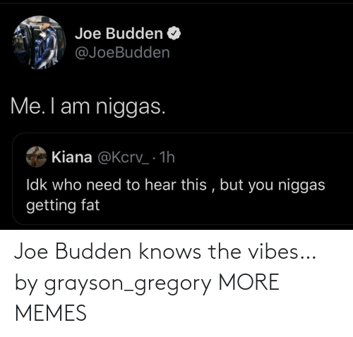 Today: Joe Budden knows the vibes… by grayson_gregory MORE MEMES