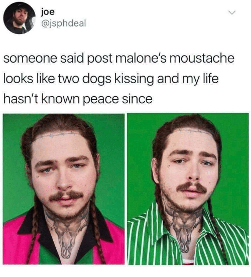 moustache: joe  @jsphdeal  someone said post malone's moustache  looks like two dogs kissing and my life  hasn't known peace since