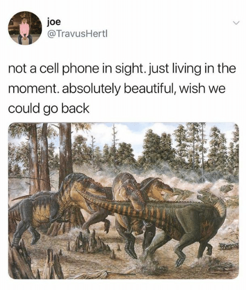 Beautiful, Phone, and Living: joe  @TravusHertl  not a cell phone in sight.just living in the  moment. absolutely beautiful, wish we  could go back  2.