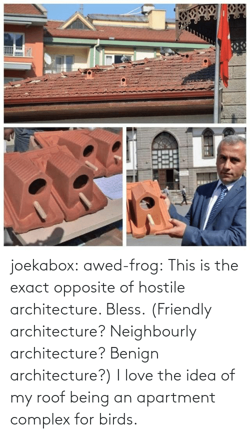 idea: joekabox:  awed-frog:  This is the exact opposite of hostile architecture. Bless. (Friendly architecture? Neighbourly architecture? Benign architecture?)  I love the idea of my roof being an apartment complex for birds.