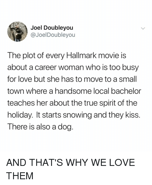 Hallmark: Joel Doubleyou  @JoelDoubleyou  The plot of every Hallmark movie is  about a career woman who is too busy  for love but she has to move to a small  town where a handsome local bachelor  teaches her about the true spirit of the  holiday. It starts snowing and they kiss.  T here is also a dog AND THAT'S WHY WE LOVE THEM