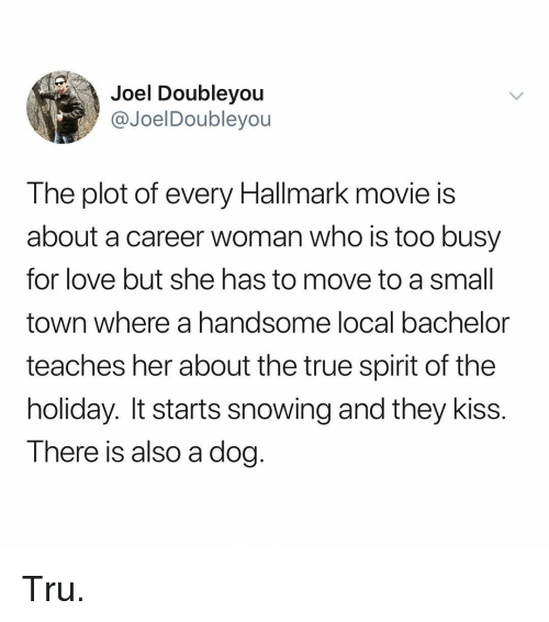 Hallmark: Joel Doubleyou  @JoelDoubleyou  The plot of every Hallmark movie is  about a career woman who is too busy  for love but she has to move to a small  town where a handsome local bachelor  teaches her about the true spirit of the  holiday. It starts snowing and they kiss.  There is also a dog. Tru.