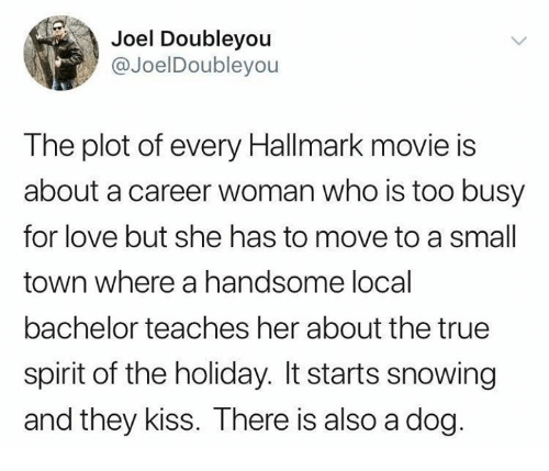 Hallmark: Joel Doubleyou  @JoelDoubleyou  The plot of every Hallmark movie is  about a career woman who is too busy  for love but she has to move to a small  town where a handsome local  bachelor teaches her about the true  spirit of the holiday. It starts snowing  and they kiss. There is also a dog.