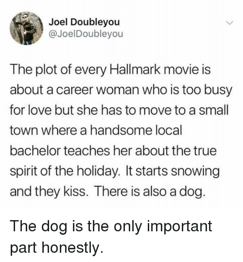 Hallmark: Joel Doubleyou  @JoelDoubleyou  The plot of every Hallmark movie is  about a career woman who is too busy  for love but she has to move to a small  town where a handsome local  bachelor teaches her about the true  spirit of the holiday. It starts snowing  and they kiss. There is also a dog The dog is the only important part honestly.