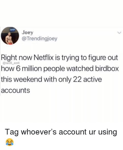 Netflix, Girl Memes, and How: Joey  @Trendingjoey  Right  now Netflix is trying to figure out  6 million people watched birdbox  weekend with only 22 active  @will_ent  how  this  accounts Tag whoever's account ur using 😂