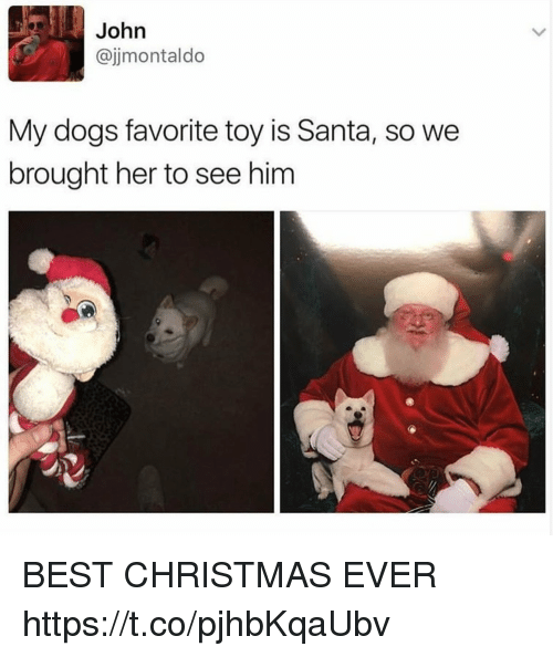 Christmas, Dogs, and Funny: John  @jimontaldo  My dogs favorite toy is Santa, so we  brought her to see hinm BEST CHRISTMAS EVER https://t.co/pjhbKqaUbv