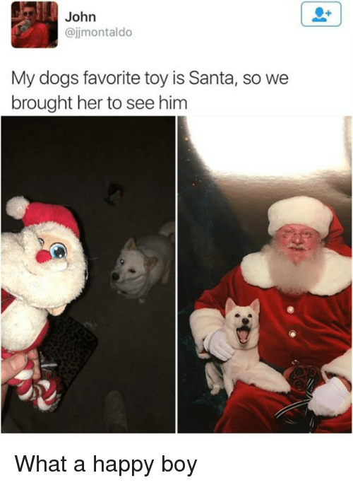 Dank, Dogs, and Happy: John  @jjmontaldo  My dogs favorite toy is Santa, so we  brought her to see him What a happy boy