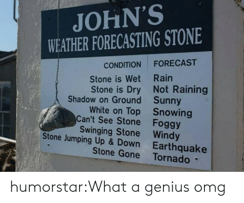 swinging: JOHN'S  WEATHER FORECASTING STONE  FORECAST  CONDITION  Stone is Wet Rain  Stone is Dry Not Raining  Shadow on Ground Sunny  White on Top Snowing  Can't See Stone Foggy  Swinging Stone Windy  Stone Jumping Up & Down Earthquake  Stone Gone Tornado humorstar:What a genius omg