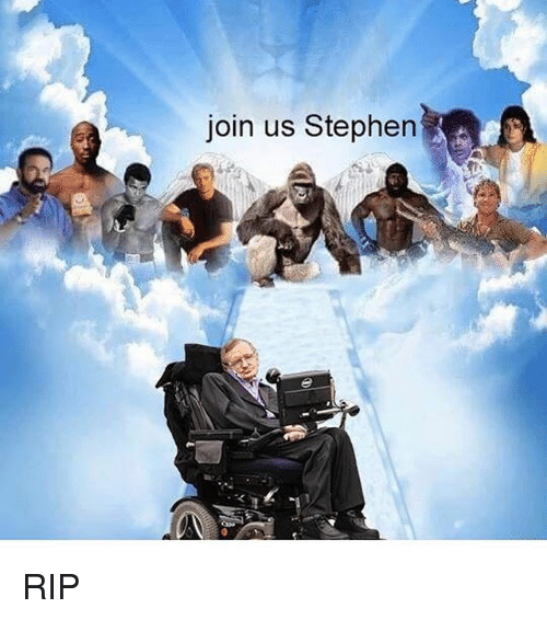 Stephen, Dank Memes, and Rip: join us Stephen RIP