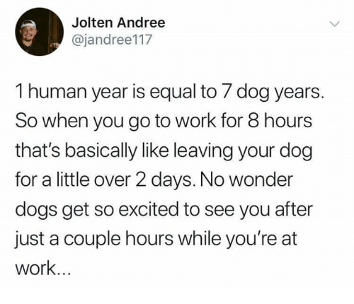Dank, Dogs, and Work: Jolten Andree  @jandree117  1 human year is equal to 7 dog years.  So when you go to work for 8 hours  that's basically like leaving your dog  for a little over 2 days. No wonder  dogs get so excited to see you after  just a couple hours while you're at  work...