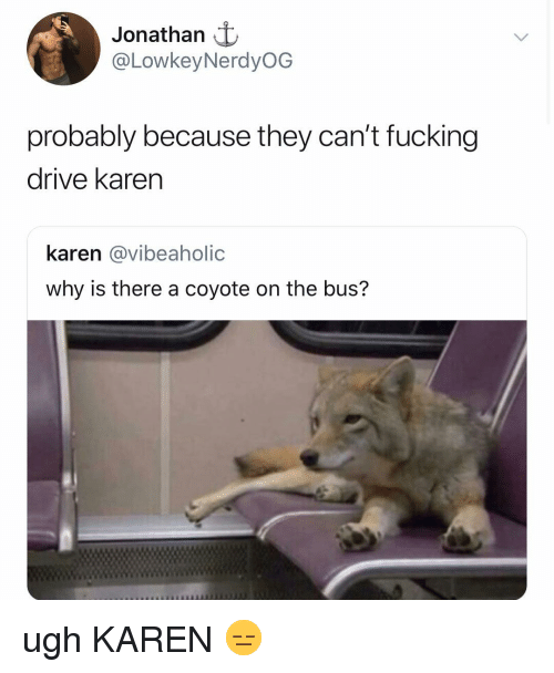 Fucking, Coyote, and Drive: Jonathan t  @LowkeyNerdyOG  probably because they can't fucking  drive karen  karen @vibeaholic  why is there a coyote on the bus? ugh KAREN 😑