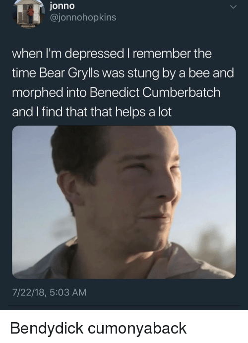 Memes, Bear, and Time: jonno  @jonnohopkins  when I'm depressed remember the  time Bear Grylls was stung by a bee and  morphed into Benedict Cumberbatch  and find that that helps a lot  7/22/18, 5:03 AM Bendydick cumonyaback