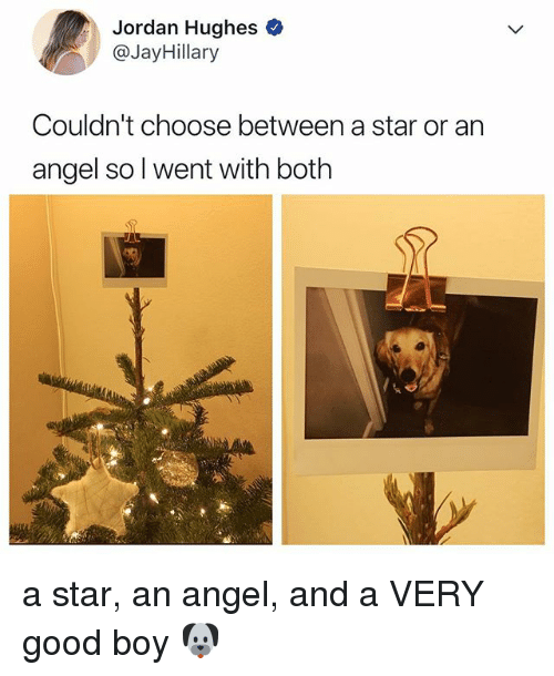 Angel, Good, and Jordan: Jordan Hughes  @JayHillary  Couldn't choose between a star or an  angel so l went with both a star, an angel, and a VERY good boy 🐶