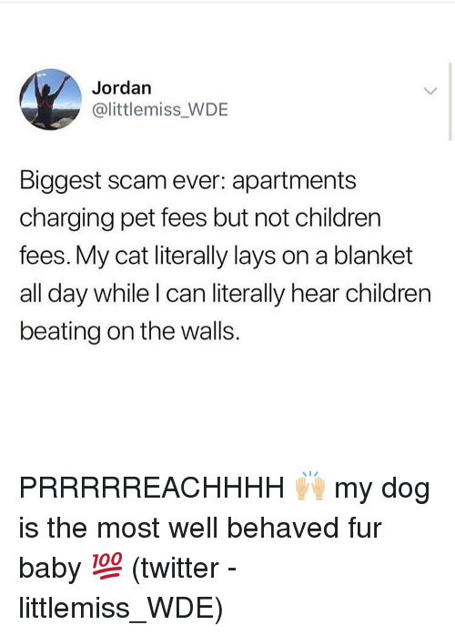 Children, Lay's, and Memes: Jordan  @littlemiss WDE  Biggest scam ever: apartments  charging pet fees but not children  fees. My cat literally lays on a blanket  all day while I can literally hear children  beating on the walls. PRRRRREACHHHH 🙌🏼 my dog is the most well behaved fur baby 💯 (twitter - littlemiss_WDE)