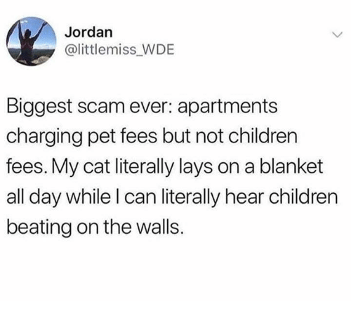 Children, Lay's, and Memes: Jordan  @littlemiss WDE  Biggest scam ever: apartments  charging pet fees but not children  fees. My cat literally lays on a blanket  all day while l can literally hear children  beating on the walls.