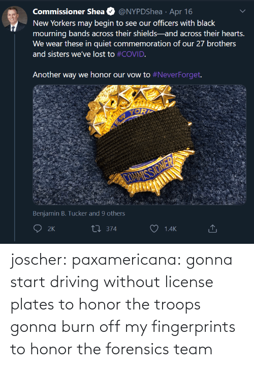 honor: joscher:  paxamericana: gonna start driving without license plates to honor the troops gonna burn off my fingerprints to honor the forensics team