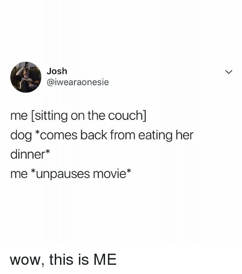 Wow, Movie, and Relatable: Josh  @iwearaonesie  me [sitting on the couchl  dog *comes back from eating her  dinner*  me *unpauses movie* wow, this is ME
