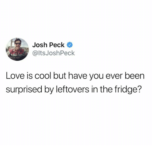 Dank, Love, and Josh Peck: Josh Peck  @ltsJoshPeck  Love is cool but have you ever been  surprised by leftovers in the fridge?
