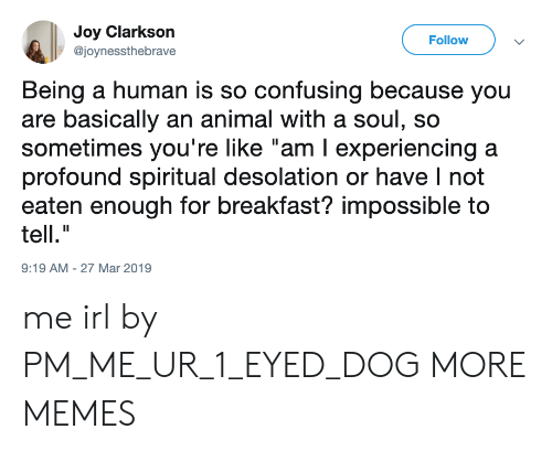 "profound: Joy Clarkson  @joynessthebrave  Follow  Being a human is so confusing because you  are basically an animal with a soul, so  sometimes you're like ""am I experiencing a  profound spiritual desolation or have I not  eaten enough for breakfast? impossible to  tell.""  9:19 AM-27 Mar 2019 me irl by PM_ME_UR_1_EYED_DOG MORE MEMES"