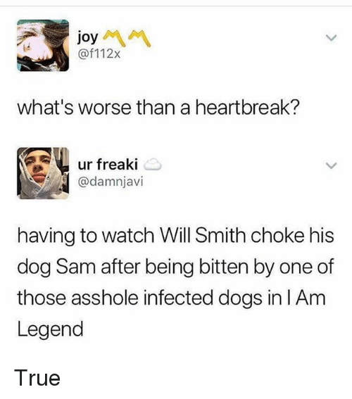 Dogs, Memes, and True: joy  @f112x  what's worse than a heartbreak?  ur freaki  @damnjavi  having to watch Will Smith choke his  dog Sam after being bitten by one of  those asshole infected dogs in IAm  Legend True