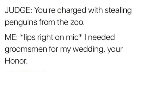 Groomsmen: JUDGE: You're charged with stealing  penguins from the zoo.  ME: *lips right on mic I needed  groomsmen for my wedding, your  Honor.