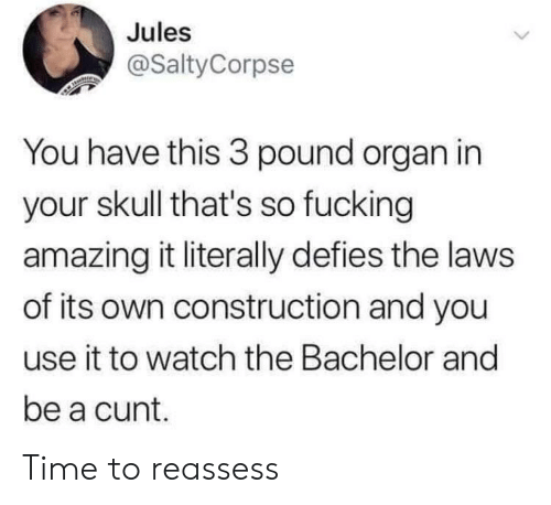 Bachelor: Jules  @SaltyCorpse  You have this 3 pound organ in  your skull that's so fucking  amazing it literally defies the laws  of its own construction and you  use it to watch the Bachelor and  be a cunt. Time to reassess