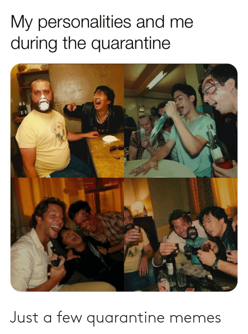 A Few: Just a few quarantine memes