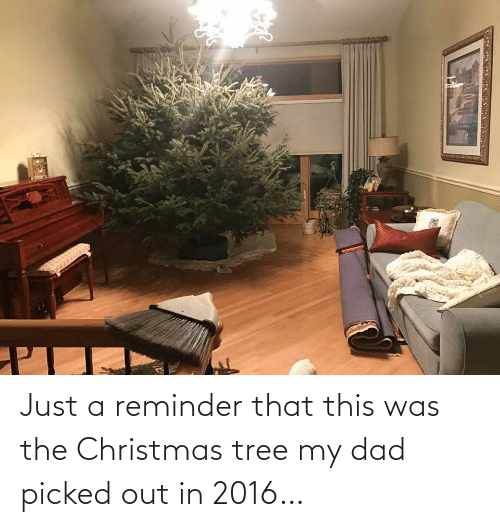 Just A: Just a reminder that this was the Christmas tree my dad picked out in 2016…