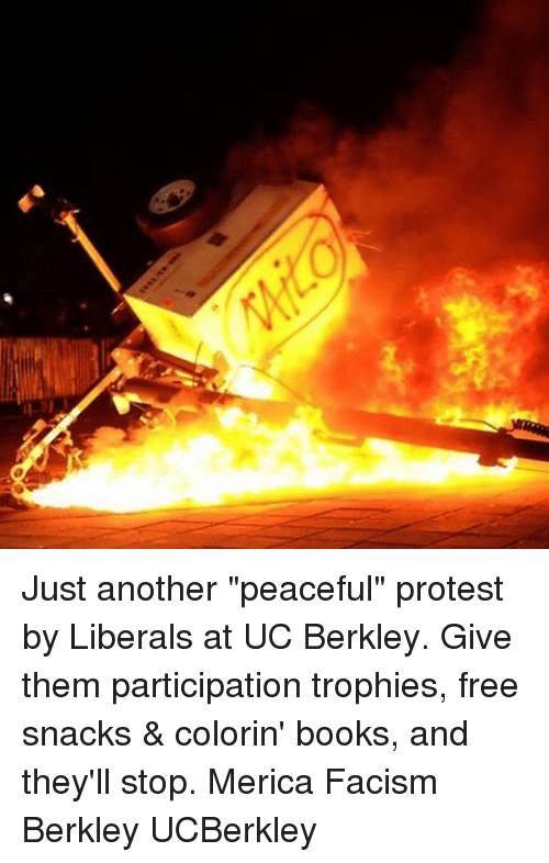 """peaceful protest: Just another """"peaceful"""" protest by Liberals at UC Berkley. Give them participation trophies, free snacks & colorin' books, and they'll stop. Merica Facism Berkley UCBerkley"""