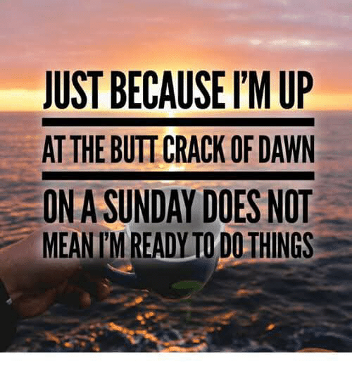 Butt, Memes, and Dawn: JUST BECAUSE I'M UP  AT THE BUTT CRACK OF DAWN  ON A SUNDAY DOES NOT  MEAN TIM READYTO DO THINGS