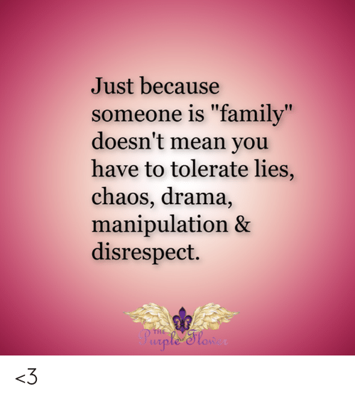 """Family, Memes, and Mean: Just because  someone is """"family""""  doesn't mean you  have to tolerate lies,  chaos, drama,  manipulation &  disrespect.  THE  ple Slon <3"""