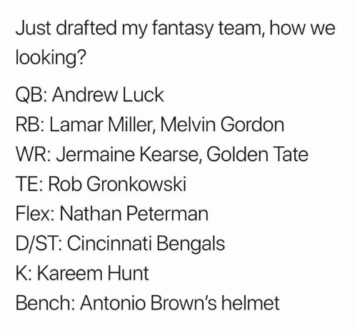 Cincinnati Bengals: Just drafted my fantasy team, how we  looking?  QB: Andrew Luck  RB: Lamar Miller, Melvin Gordon  WR: Jermaine Kearse, Golden Tate  TE: Rob Gronkowski  Flex: Nathan Peterman  D/ST: Cincinnati Bengals  K: Kareem Hunt  Bench: Antonio Brown's helmet