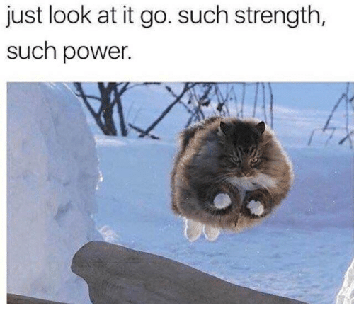 Power, Strength, and Look: just look at it go. such strength,  such power
