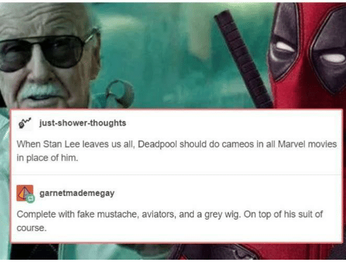 Deadpool: just-shower-thoughts  When Stan Lee leaves us all, Deadpool should do cameos in all Marvel movies  in place of him.  garnetmademegay  Complete with fake mustache, aviators, and a grey wig. On top of his suit of  course.