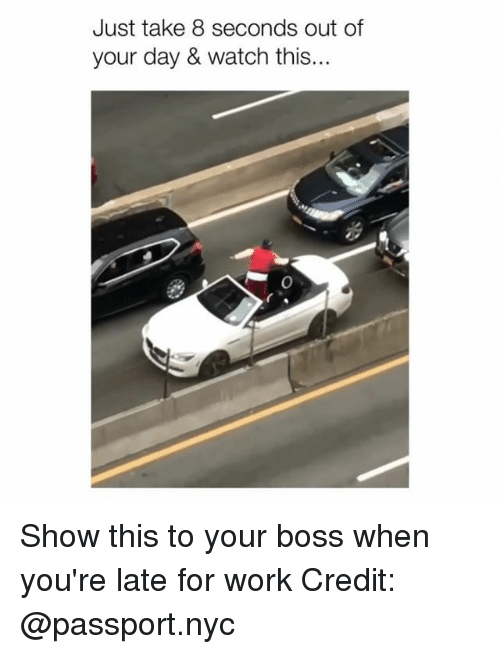 Memes, Work, and Passport: Just take 8 seconds out of  your day & watch this... Show this to your boss when you're late for work Credit: @passport.nyc