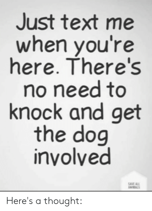 Animals, Memes, and Text: Just text me  when you're  here. There's  no need to  knock and get  the dog  inyolved  SVE ALL  ANIMALS Here's a thought: