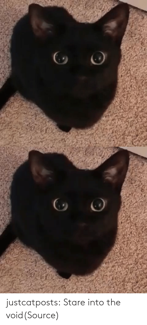 Black: justcatposts:  Stare into the void(Source)