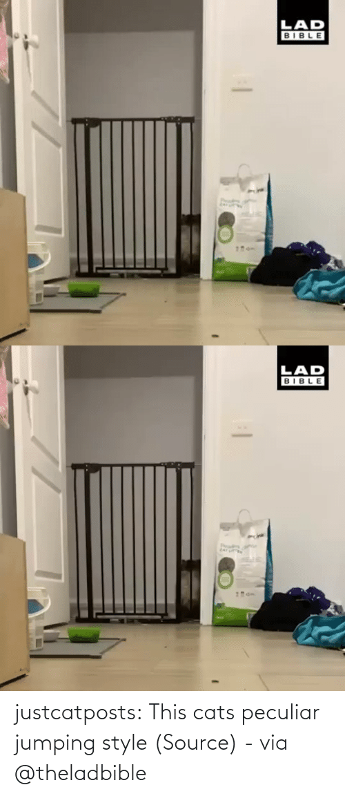 source: justcatposts:  This cats peculiar jumping style (Source) - via @theladbible