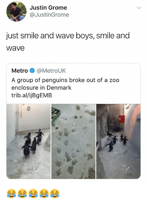 Denmark, Metro, and Penguins: Justin Grome  @JustinGrome  just smile and wave boys, smile and  Wave  Metro@MetroUK  A group of penguins broke out of a zoo  enclosure in Denmark  trib.al/ijBgEMB 😂😂😂😂😂