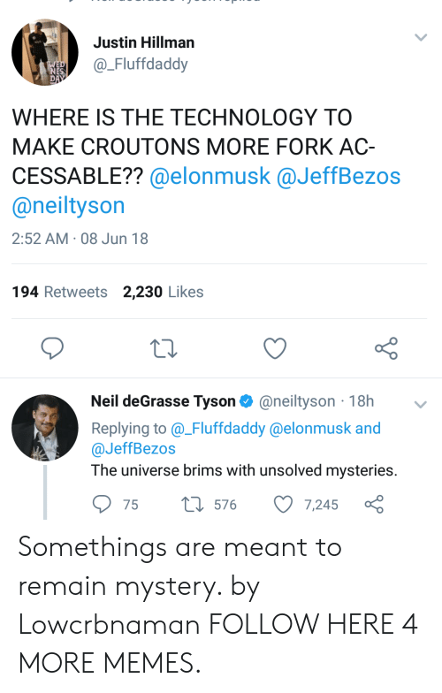 Dank, Memes, and Neil deGrasse Tyson: Justin Hillman  Fluffdaddy  WHERE IS THE TECHNOLOGY TO  MAKE CROUTONS MORE FORK AC-  CESSABLE?? @elonmusk @JeffBezos  @neiltyson  2:52 AM 08 Jun 18  194 Retweets 2,230 Likes  Neil deGrasse Tyson@neiltyson 18h v  Replying to_Fluffdaddy @elonmusk and  @JeffBezos  The universe brims with unsolved mysteries  75  576  7,245 Somethings are meant to remain mystery. by Lowcrbnaman FOLLOW HERE 4 MORE MEMES.