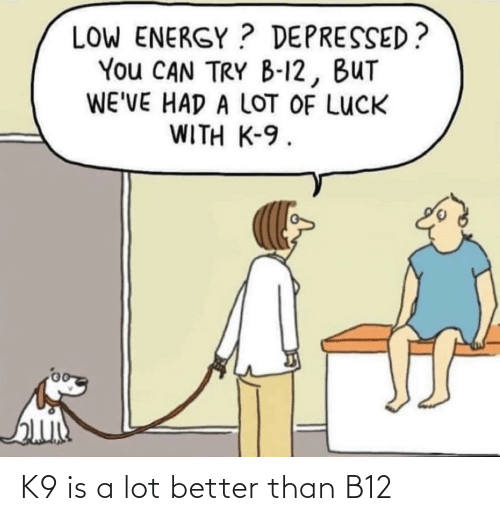 Better Than: K9 is a lot better than B12