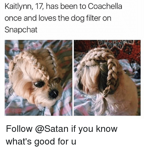 Snapchater: Kaitlynn, 17, has been to Coachella  once and loves the dog filter on  Snapchat  If: Exterior Follow @Satan if you know what's good for u