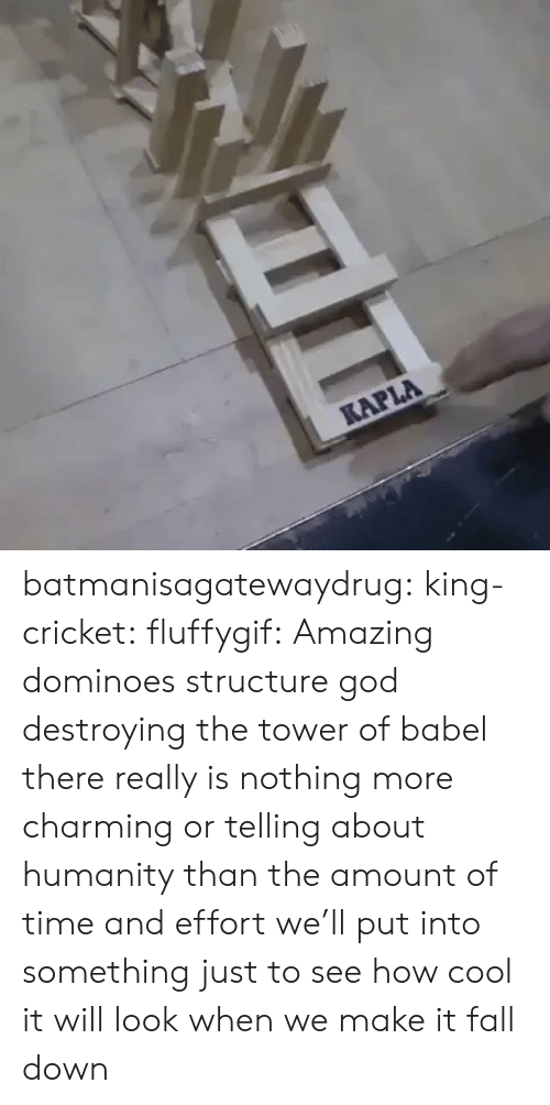 Fall, God, and Instagram: KAPLA batmanisagatewaydrug: king-cricket:  fluffygif:  Amazing dominoes structure    god destroying the tower of babel  there really is nothing more charming or telling about humanity than the amount of time and effort we'll put into something just to see how cool it will look when we make it fall down