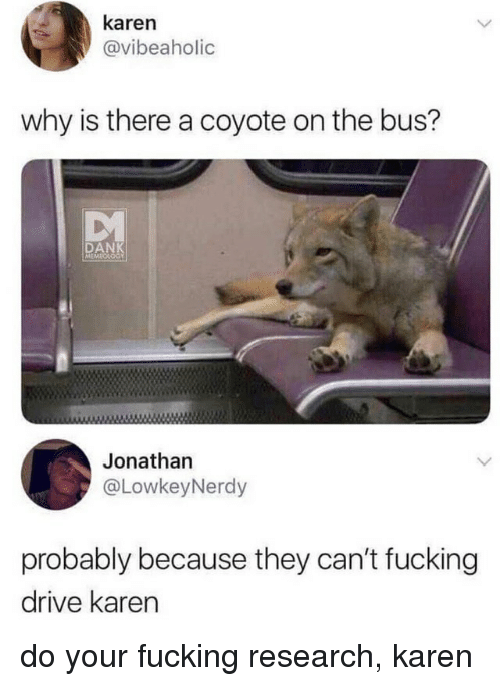 Dank, Fucking, and Ironic: karen  @vibeaholic  why is there a coyote on the bus?  DANK  Jonatharn  @LowkeyNerdy  probably because they can't fucking  drive karen do your fucking research, karen