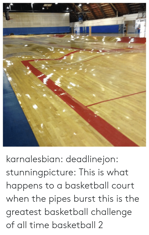 Basketball, Tumblr, and Blog: karnalesbian:  deadlinejon: stunningpicture:  This is what happens to a basketball court when the pipes burst  this is the greatest basketball challenge of all time  basketball 2