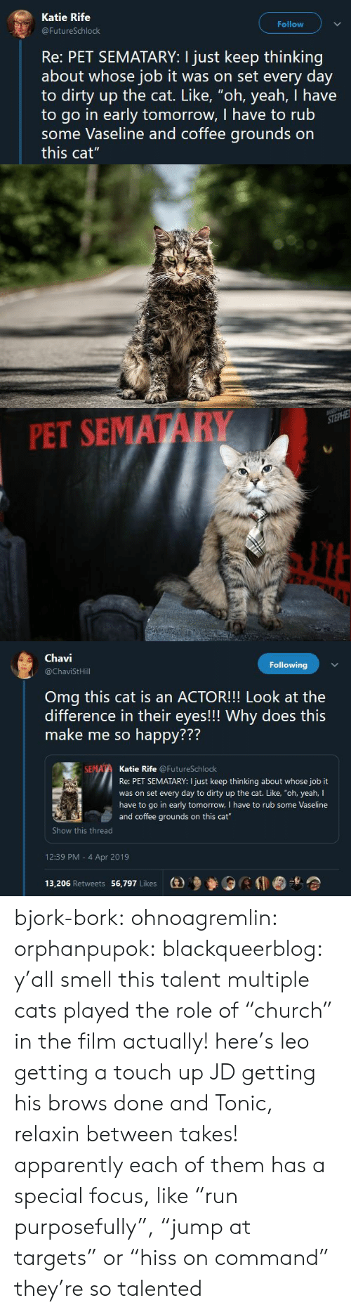 """Brows: Katie Rife  Follow  FutureSchlock  Re: PET SEMATARY: I just keep thinking  about whose job it was on set every day  to dirty up the cat. Like, """"oh, yeah, I have  to go in early tomorrow, I have to rub  some Vaseline and coffee grounds on  this cat""""   PET SEMATARY   Chavi  @ChaviStHill  Following  Omg this cat is an ACTOR!!! Look at the  difference in their eyes!!! Why does this  make me so happy???  772  Katie Rife @FutureSchlock  Re: PET SEMATARY: I just keep thinking about whose job it  was on set every day to dirty up the cat. Like, """"oh, yeah, I  have to go in early tomorrow, I have to rub some Vaseline  and coffee grounds on this cat  Show this thread  12:39 PM - 4 Apr 2019  13,206 Retweets 56,797 Likes  (e)乡參0 bjork-bork:  ohnoagremlin:  orphanpupok:  blackqueerblog: y'all smell this talent  multiple cats played the role of """"church"""" in the film actually! here's leo getting a touch up JD getting his brows done and Tonic, relaxin between takes!   apparently each of them has a special focus, like """"run purposefully"""", """"jump at targets"""" or """"hiss on command"""" they're so talented"""